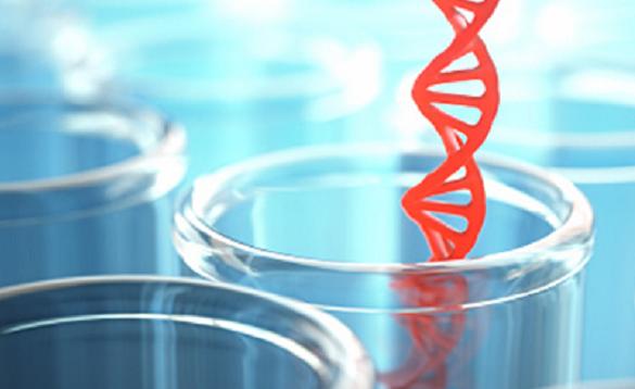 Kit de extracție a acizilor nucleici cu ajutorul coloanei de centrifugare