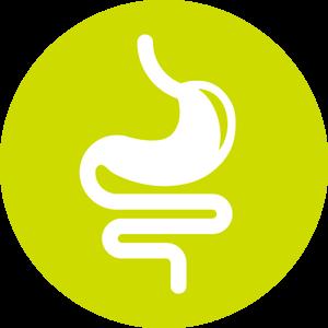 Panel Gastrointestinal